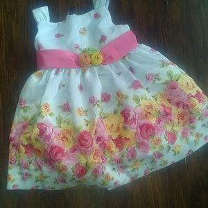 Adorable American Princess formal dress